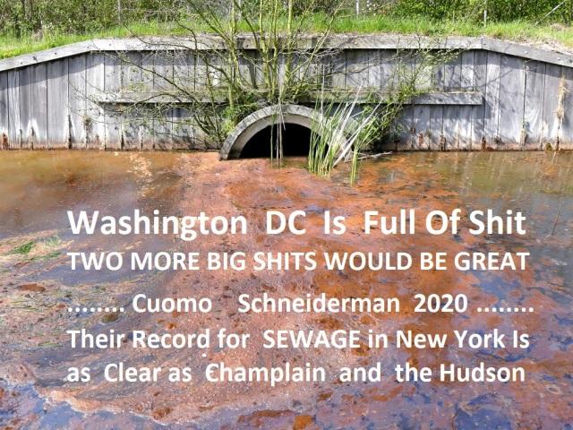 sewage-spill-St.-Pete-Large.jpg
