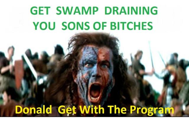 ASwamp2